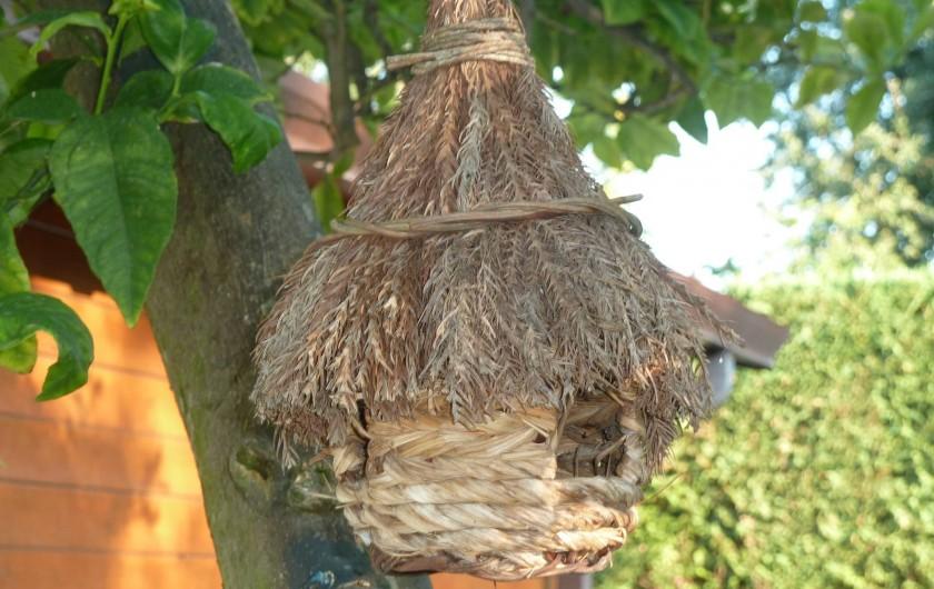 Location de vacances - Chalet à Pozzuoli - la maison des oiseaux