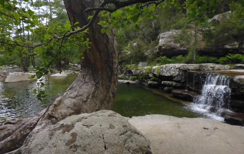 Location de vacances - Maison - Villa à Évisa - piscine naturelle en forêt d'Aïtpne