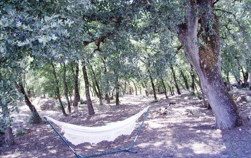 Location de vacances - Chambre d'hôtes à Alcobaça - bois de chênes hammack