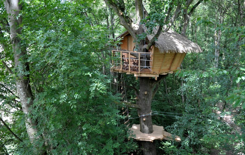 """Location de vacances - Cabane dans les arbres à Saint-Germain-des-Essourts - Cabane """"Terriers"""""""