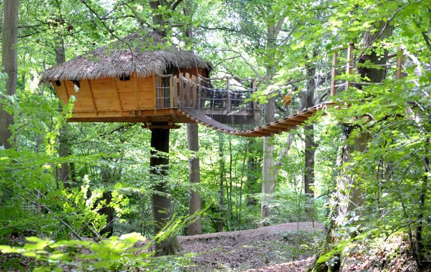 """Location de vacances - Cabane dans les arbres à Saint-Germain-des-Essourts - Cabane """"Canyon"""""""