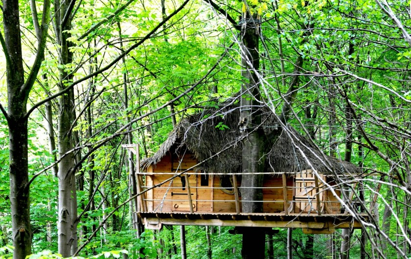 """Location de vacances - Cabane dans les arbres à Saint-Germain-des-Essourts - Cabane """"Fer à Cheval"""""""