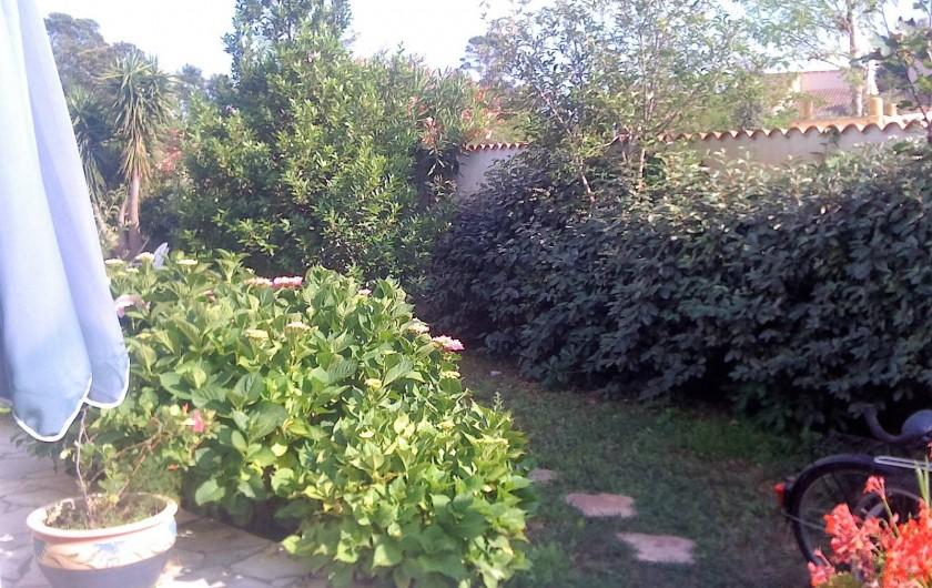 Location de vacances - Studio à Lucciana - Jardin