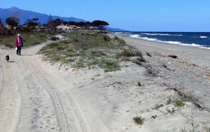 Location de vacances - Studio à Lucciana - Les dunes