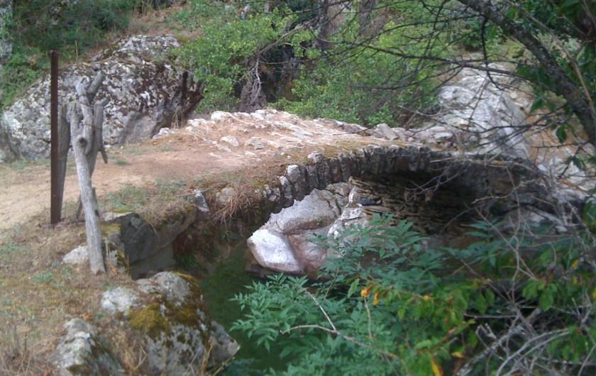 Location de vacances - Studio à Lucciana - Centre Corse