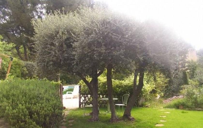 Location de vacances - Mas à La Ciotat - Jardin