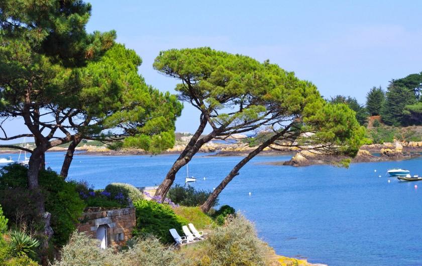 Location de vacances - Maison - Villa à Pordic - île de Bréhat : le Paradis