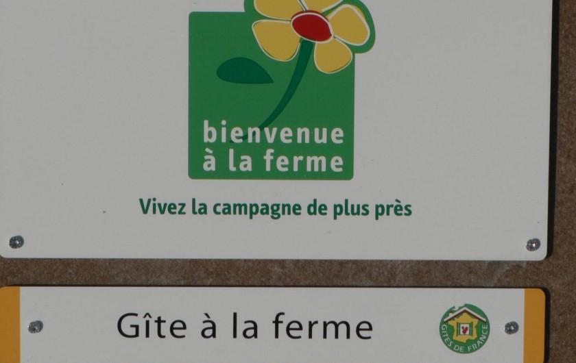 Location de vacances - Gîte à Saint-Victor-Malescours - Les activités de l'exploitation