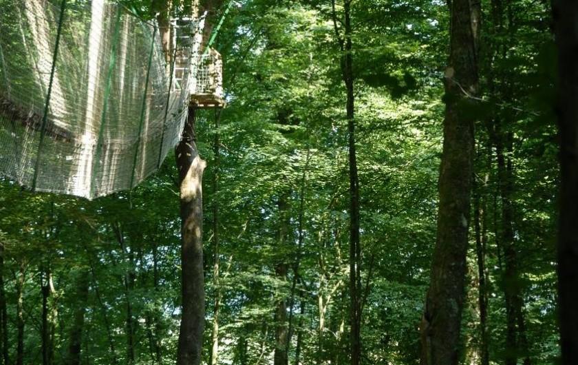 Location de vacances - Cabane dans les arbres à Signy-l'Abbaye - la canopée à 16 mètres, attention au vertige !