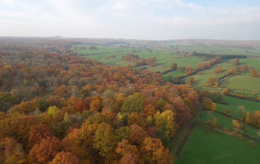 Location de vacances - Cabane dans les arbres à Signy-l'Abbaye - vue de drone de la forêt et des pâturages
