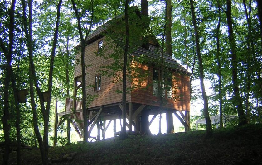 Location de vacances - Cabane dans les arbres à Signy-l'Abbaye - Notre Ruche : cabane Familiale