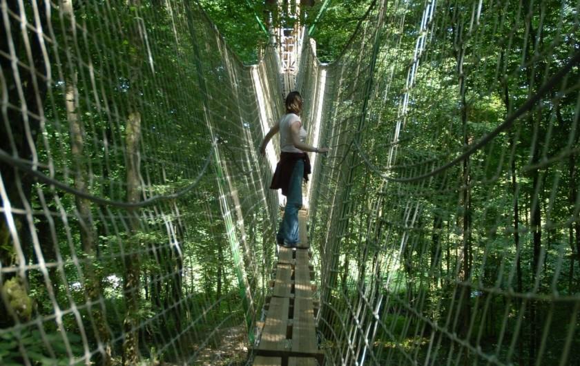 Location de vacances - Cabane dans les arbres à Signy-l'Abbaye - La passerelle de la canopée