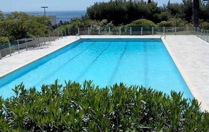Location de vacances - Appartement à Cassis - La piscine, surveillée l'été.