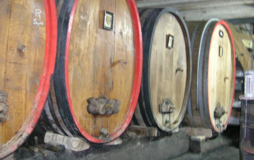 Location de vacances - Gîte à Dambach-la-ville - Cave du vigneron