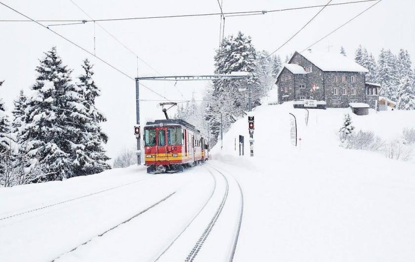 Location de vacances - Hôtel - Auberge à Villars-sur-Ollon - La Maison de Montagne de Bretaye, lieu sans voiture, accès facile par le train