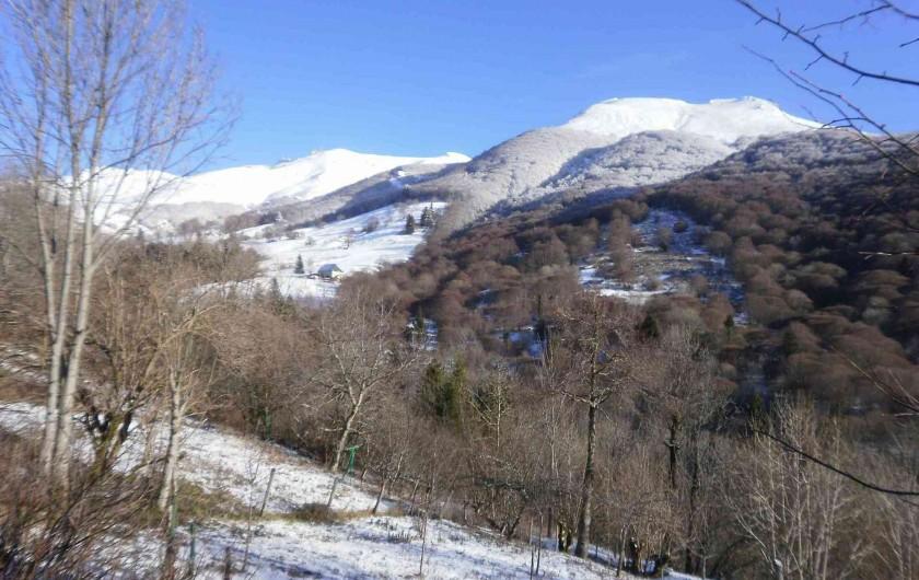 Location de vacances - Gîte à Saint-Jacques-des-Blats - Plomb du Cantal