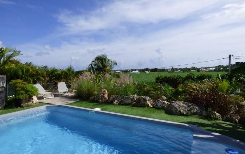 Location de vacances - Gîte à Saint-François - La piscine avec vue sur les champs de cannes à sucre