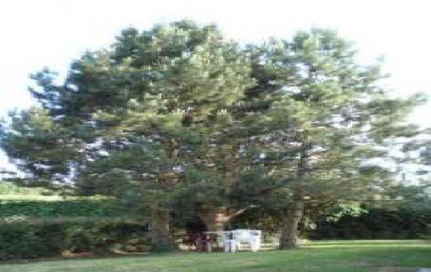 Location de vacances - Maison - Villa à Samer