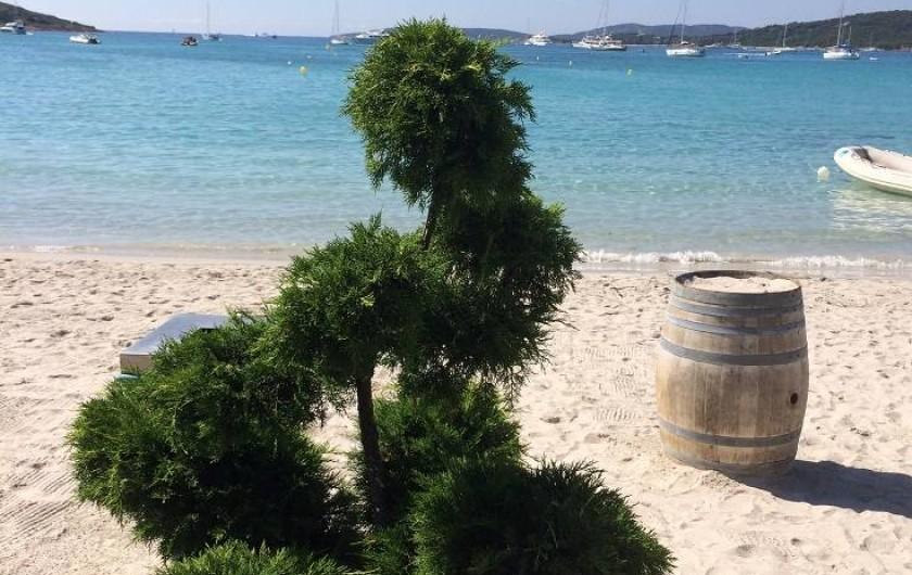 Location de vacances - Appartement à Porto-Vecchio - Plage de St Cyprien accessible à pied...