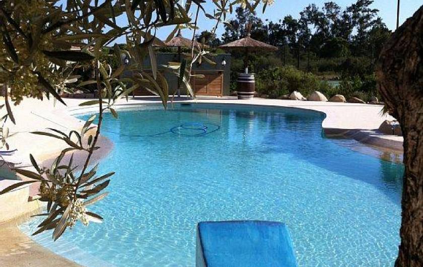 Location de vacances - Villa à Lecci - Plage piscine privée arborée