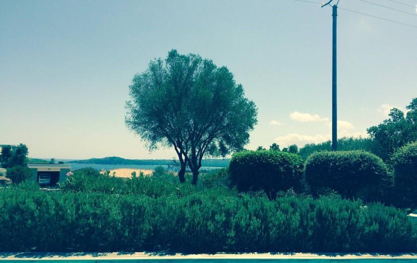 Location de vacances - Villa à Sainte-Lucie de Porto-Vecchio - Vue Piscine Mer