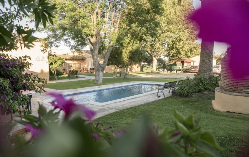 Location de vacances - Appartement à Castelló d'Empúries - La piscine et le jardin