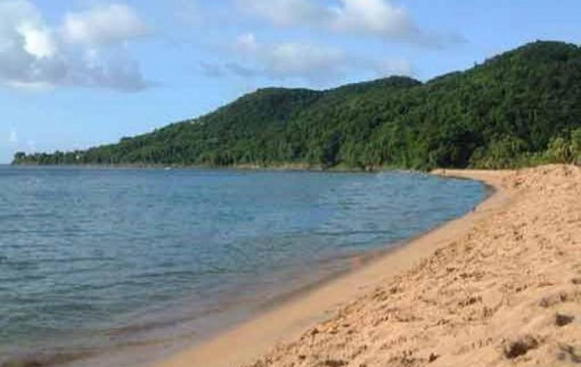 Location de vacances - Villa à Deshaies - La plage de la Grand-Anse