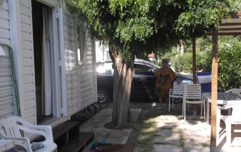 Location de vacances - Bungalow - Mobilhome à Saint-Aygulf - devant  ombrage de l arbre