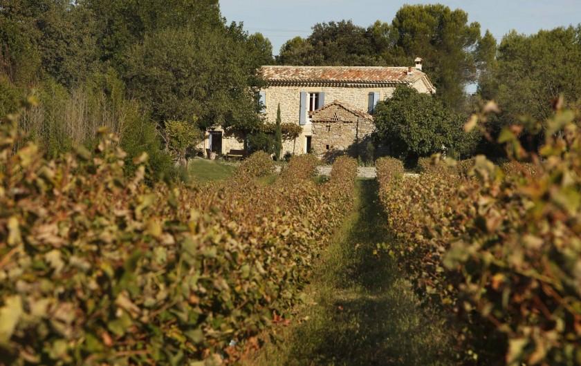 Location de vacances - Chambre d'hôtes à Aigremont - Les vignes du Mas