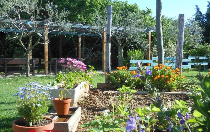Location de vacances - Gîte à Gras - La pergola, 20 places à table face au Mont Ventoux et à la prairie.
