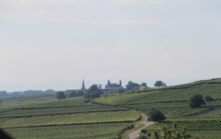 Location de vacances - Gîte à Pfaffenheim - Vue sur le vignoble et le château d'Isembourg