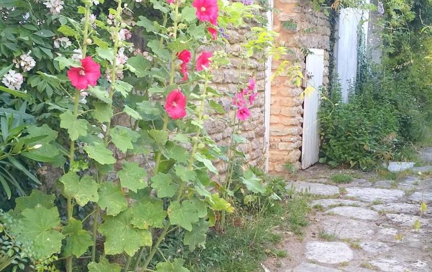 Location de vacances - Maison - Villa à Les Portes-en-Ré