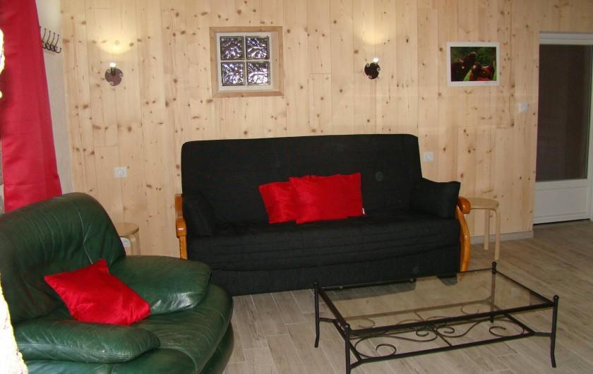 Location de vacances - Gîte à Marchastel - rez-de-chaussée : salon avec canapé convertible