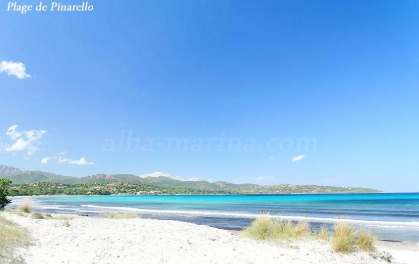 Location de vacances - Appartement à Sainte-Lucie de Porto-Vecchio - Plage de PINARELLO à 2km du logement