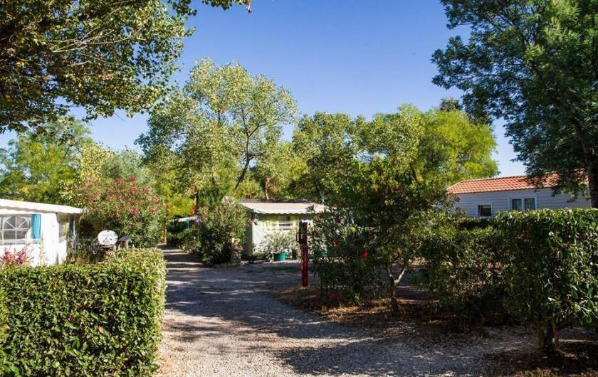 Location de vacances - Bungalow - Mobilhome à Céret - Allée N°2