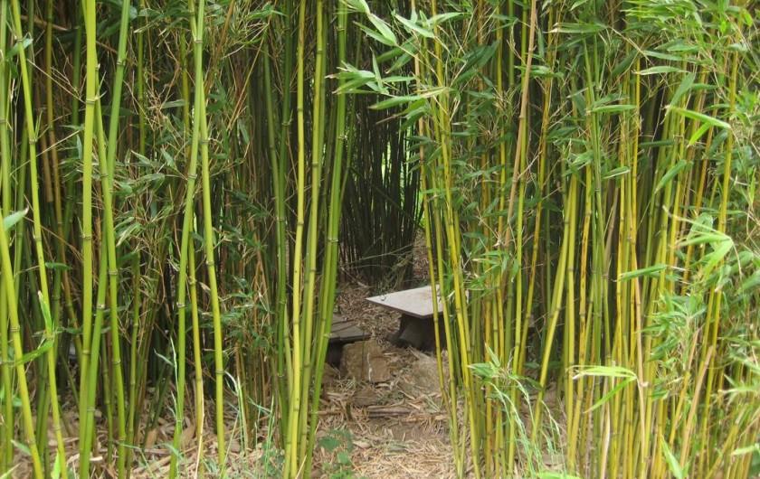 Location de vacances - Gîte à Saint-Alban-d'Ay - Cabane dans les bambous