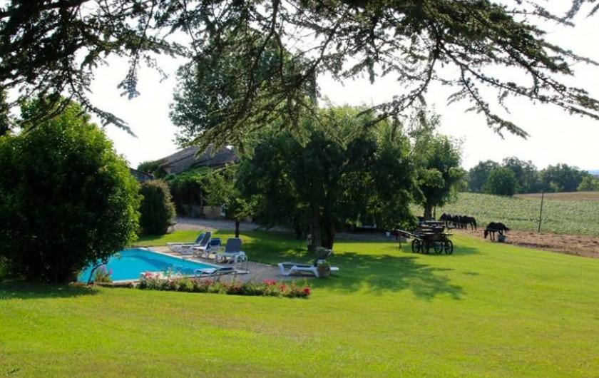 Location de vacances - Maison - Villa à Montagnac-sur-Lède - Jardin et piscine