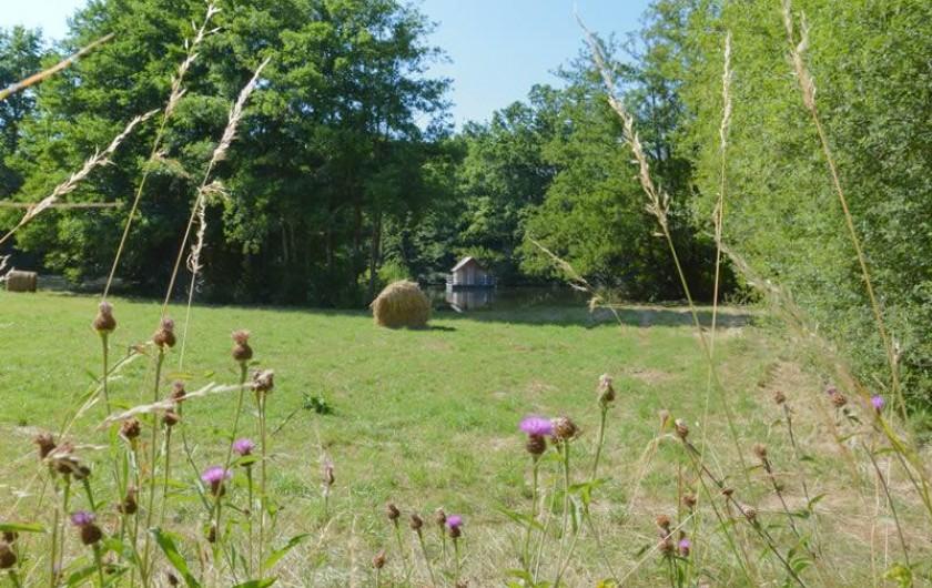 Location de vacances - Gîte à La Baconnière - Parc