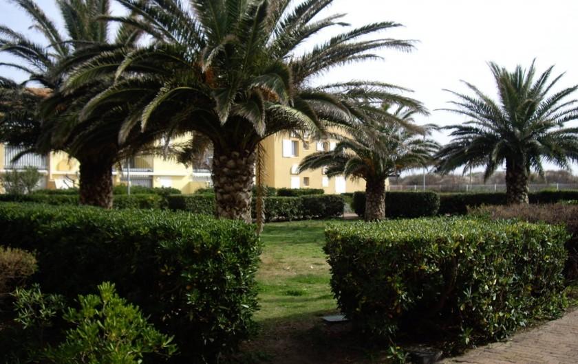 Location de vacances - Appartement à Le Cap d'Agde - LE JARDIN DE LA RESIDENCE TOUT CLOTURE ET SECURISE
