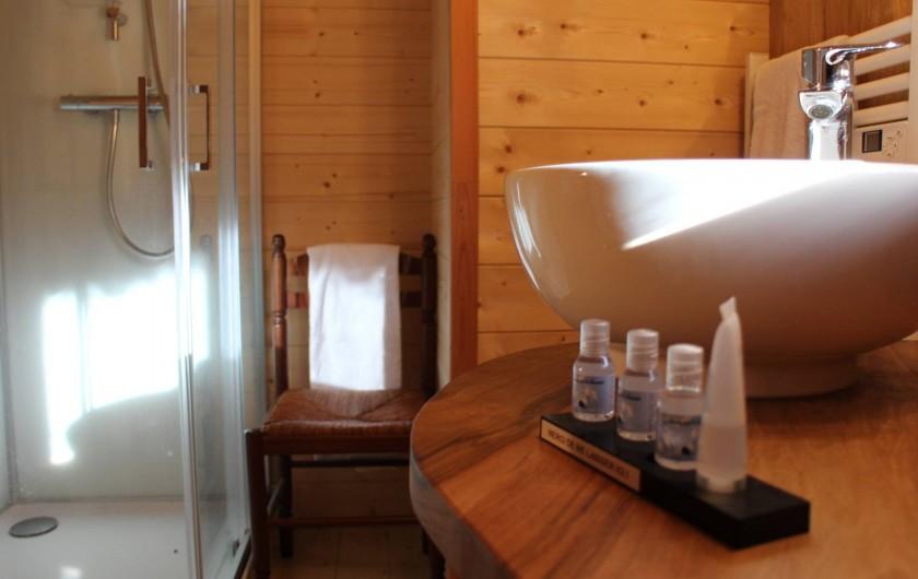 Location de vacances - Insolite à Pressac - salle de bain du lodge