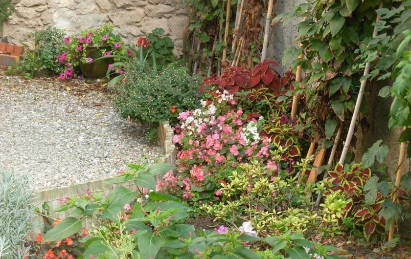 Location de vacances - Appartement à Villeneuve-Minervois - Cour intérieure fleurie.