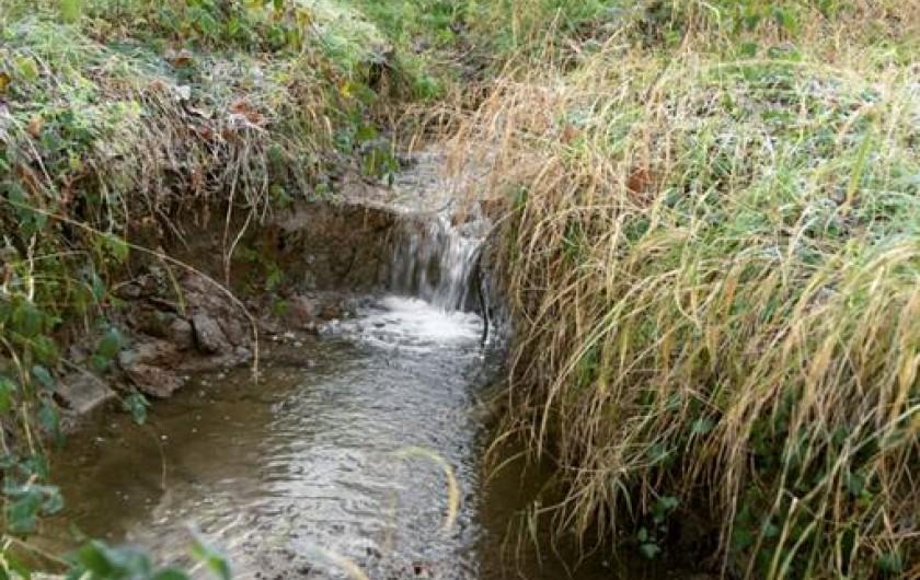 Location de vacances - Chambre d'hôtes à Laruscade - Notre ruisseau, classé Natura 2000, la Moulinasse.