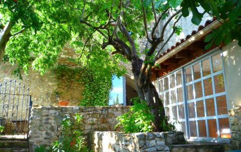 Location de vacances - Maison - Villa à La Rouvière - A droite le studio et en face, l'arriere de la maison.