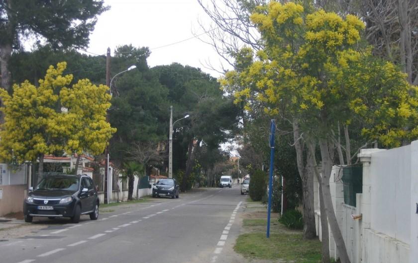 Location de vacances - Appartement à Argelès-sur-Mer - Avenue des mimosas
