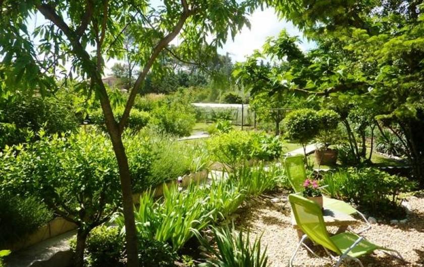 Location de vacances - Gîte à Boisset-et-Gaujac - Jardin