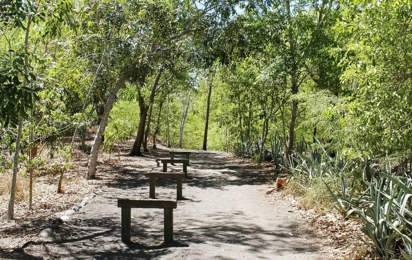 Location de vacances - Maison - Villa à Etang-Salé les Hauts - Parcours de santé proche du logement