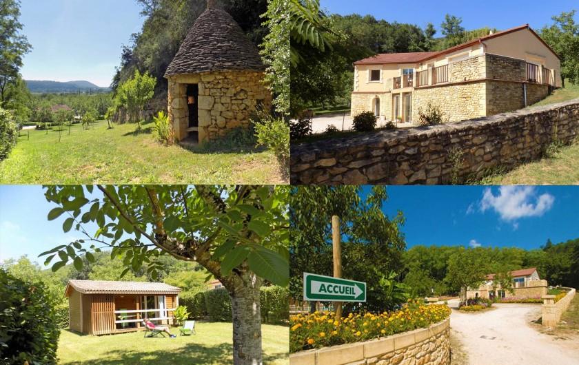 Location de vacances - Chalet à Sarlat-la-Canéda - Vue dans le parc