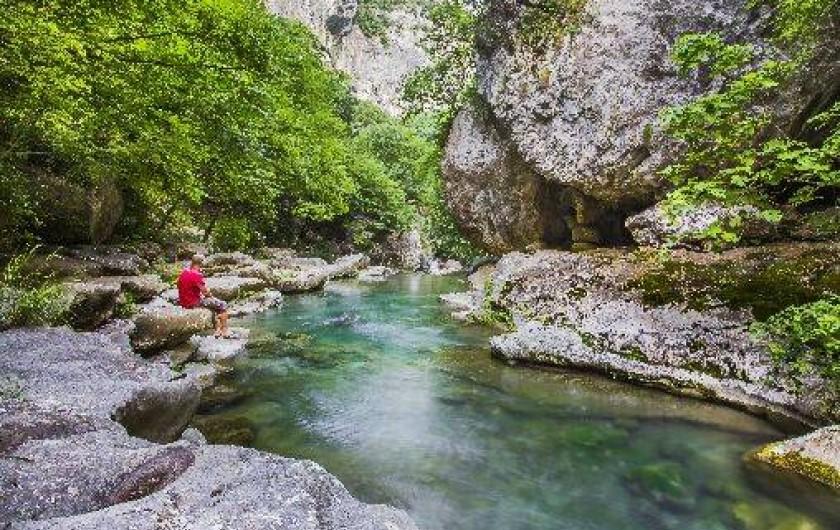 Location de vacances - Camping à La Colle-sur-Loup