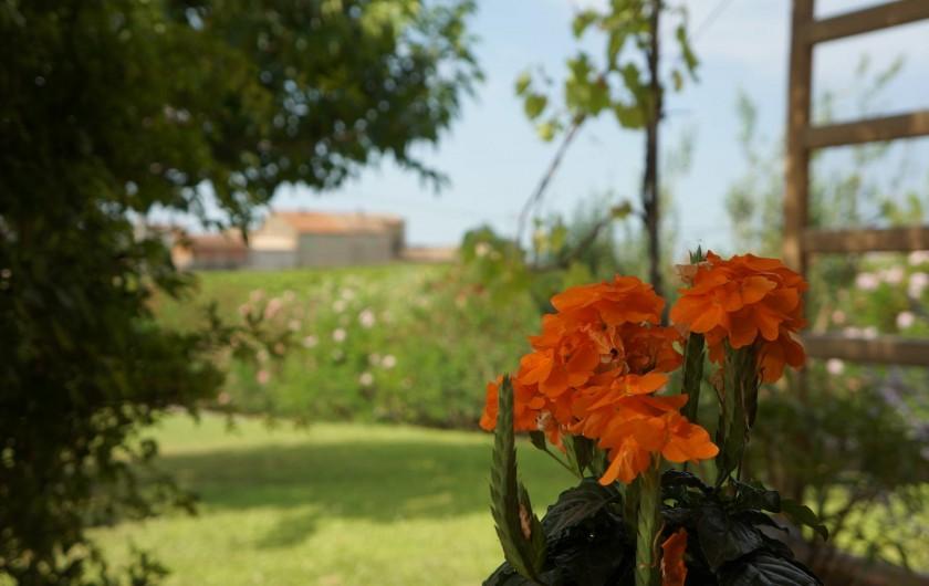 Location de vacances - Villa à Saint-Pierre-de-Vassols - vue sud-ouest terrasse