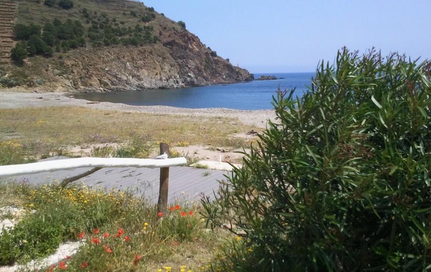 Location de vacances - Appartement à Cerbère - vue d'une partie de la plage devant l'appartement